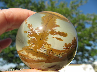 "2.04"" OWYHEE PICTURE JASPER SPHERE RARE STONE BALL OREGON USA 51.9 mm"