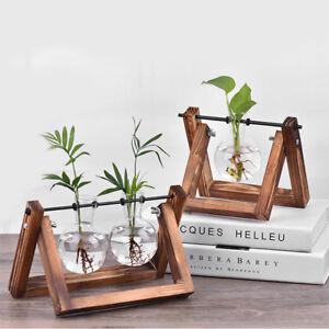 Bulb Glass Planter Vase Terrarium Flower Plant Container With Wooden