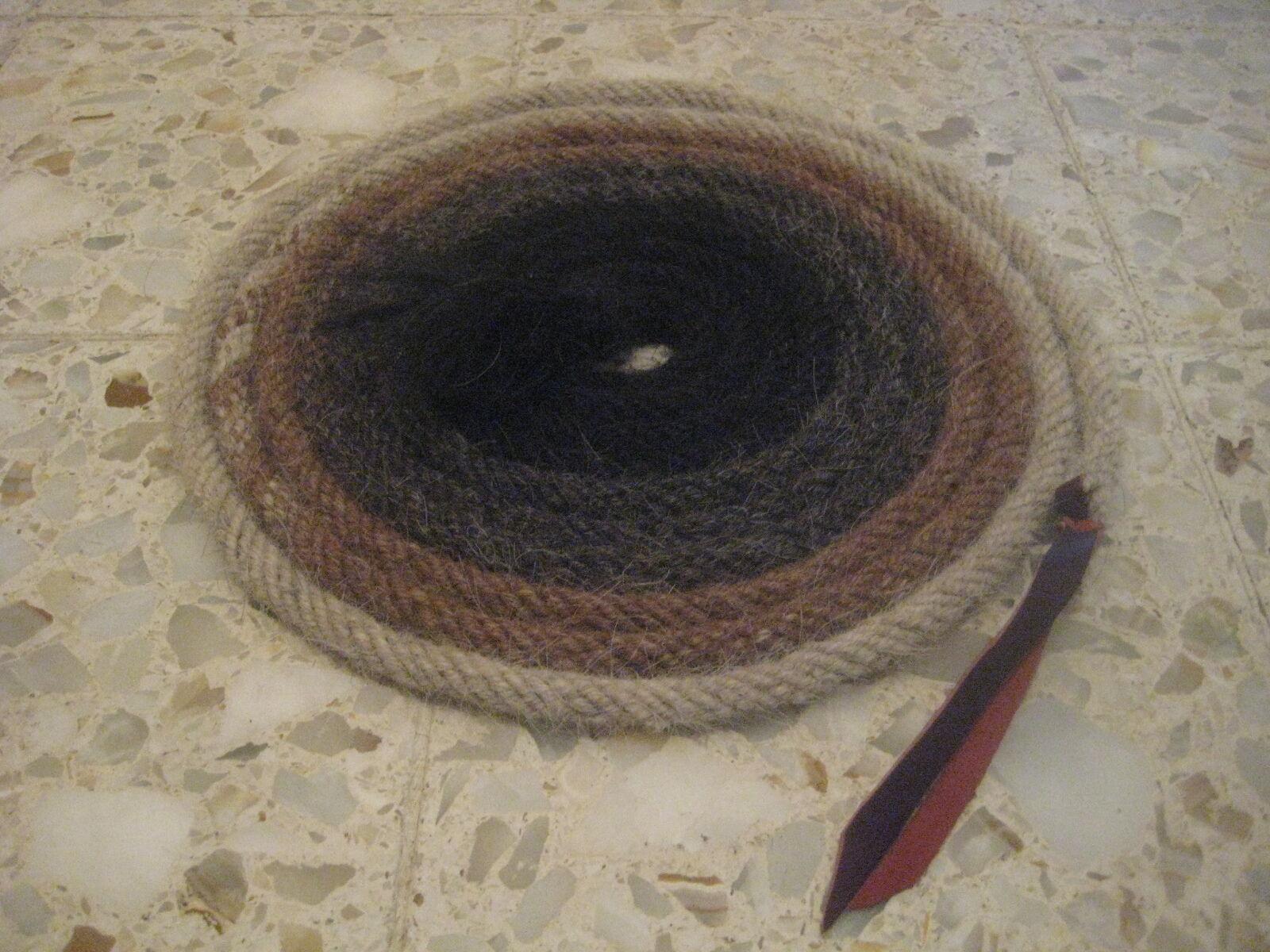 Crinière de cheval cheveux mecate 14 FT (environ 4.27 m) long 1 2  DIA. Motif V -- changeHommest de couleurs