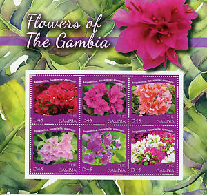 Gambie-2015-neuf-sans-charniere-fleurs-de-gambie-6v-m-s-bougainvillees-flora-timbres