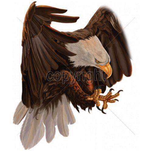 animali naturali nera motivo con Big a Felpa motivi Eagle HnIqYddg