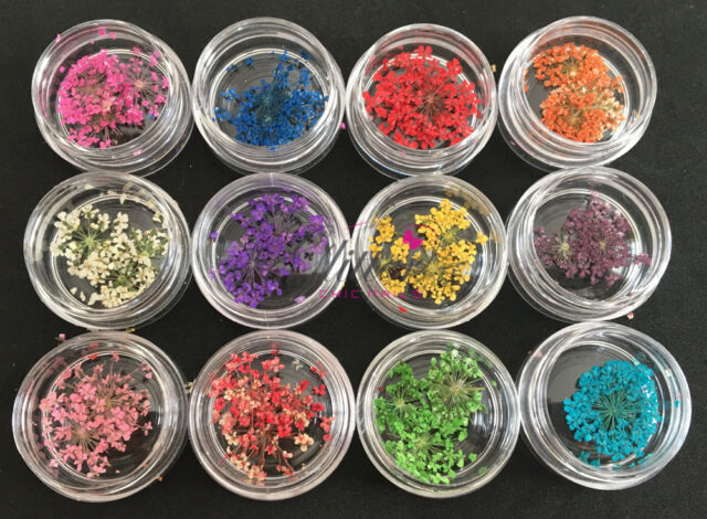TINY DRIED FLOWER DECORATION SET OF 12 FOR ACRYLIC UV GEL NAIL ART DESIGN