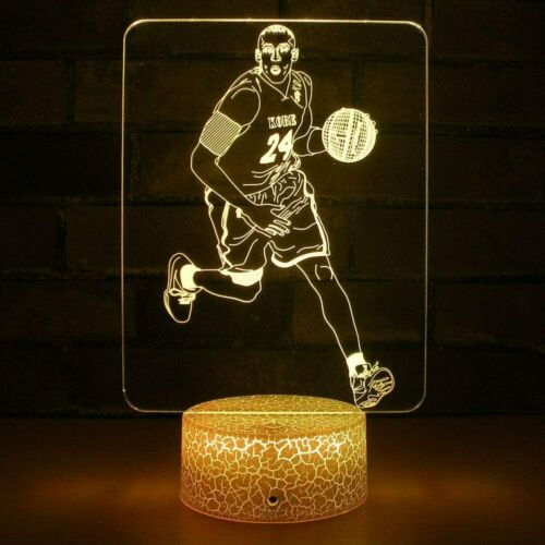 Slam Dunk Dribbling Transparent Basketball Light 7 Color Switching Remote 3D USA