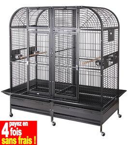 Volière/cage Pour Perroquet Géante Gris Du Gabon-grand Cacatoès Et Ara As2569