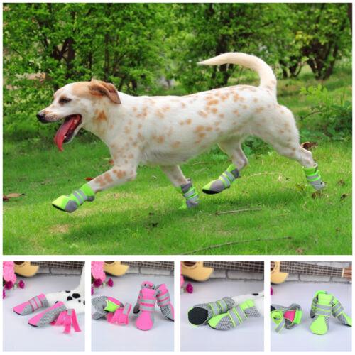 Cute Green Dog Shoes Golden Labrador Retriever Booties Items