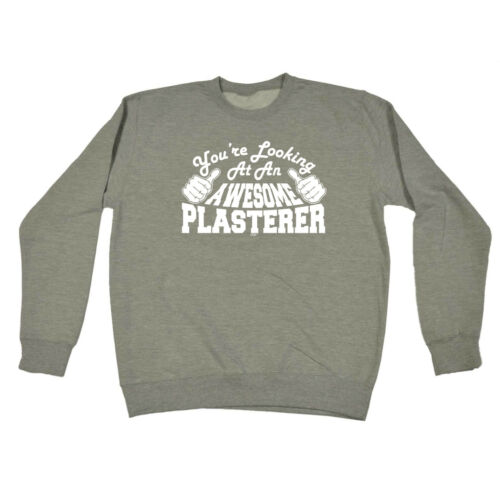 Funny Novelty Sweatshirt Jumper Top Plasterer Youre Looking At An Awesome