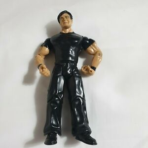 WWE-WWF-ERIC-BISCHOFF-WRESTLING-FIGURE-DATED-2003-BY-JAKKS-PACIFIC