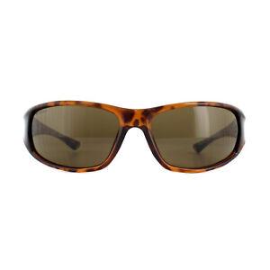 ba3642942f Columbia Sunglasses Borrego C620 Tortoise Brown Brown 882851147710 ...