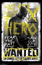 BATMAN VS SUPERMAN - FEAR THE BAT POSTER - 22x34 - NEW MOVIE 14066