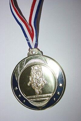 """Médaille /"""" Argent /"""" EQUITATION Doré avec ruban diamètre 70 mm poids 100 gr"""