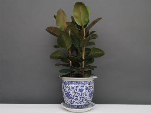 Blumentopf Blumenübertopf Pflanztopf Blau-Weiß Stil Porzellan  Ø 40cm P0141-6