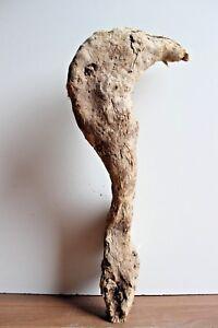 Treibholz Schwemmholz 1 Skulptur Floristik Garten Basteln Deko