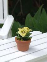 Miniature Dollhouse Fairy Garden Tiny Yellow Pansy Flowers Pansies Pot