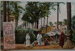 Alessandria-Cartolina-Palma-da-Gabbari-Egitto-Bon-Stato-1914