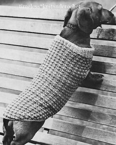 Knitting Pattern For A Greyhound Coat : VINTAGE KNITTING PATTERN FOR A SMALL DOG / DACHSHUND COAT - DK eBay