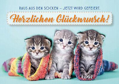 Ak Gluckwunsch Geburtstag Katze Korb Mit Blumen Nr 2279242