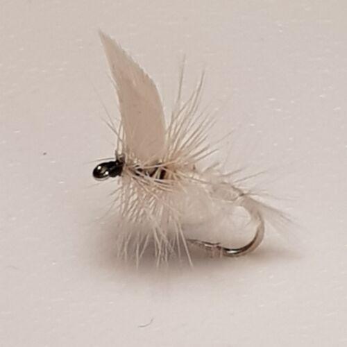 3 Bianco Falene asciugare le mosche