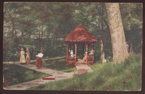 Postcard Benton Harbor Mi Eastman Springs 1907?