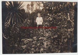 (f4648) Orig. Photo Bad Pyrmont, Jeunes En Kurpark, Pentecôte 1924-afficher Le Titre D'origine