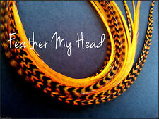"""14/"""" Feather Extension For Hair Super Long 11/"""" Whiting Eurohackle Orange"""