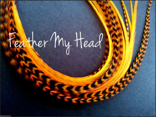 """14/"""" Feather Extension For Hair Super Long 11/"""" Orange Whiting Eurohackle"""
