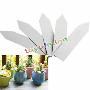 4-034-Plant-Pot-Markers-Plastic-Garden-Stake-Tags-Nursery-seed-Labels-100pcs-white