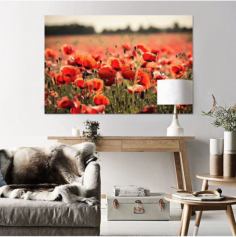 3D Rote Blaumen 437 Fototapeten Wandbild Fototapete BildTapete Familie AJSTORE DE