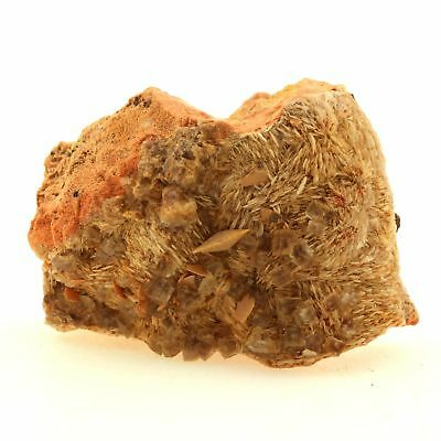 France Rare Cool In Summer And Warm In Winter Baryte Lantignié Fluorite 260.8 Ct Lovely Wulfenite