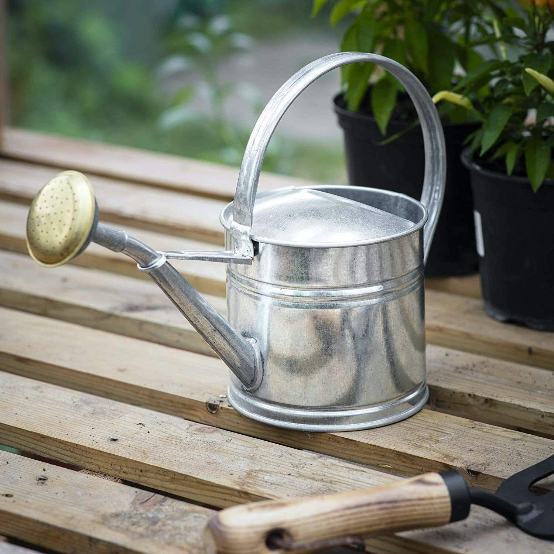 1.5Litre Silver Galvanised Steel Metal Outdoor Garden Watering Can Brass Rose UK