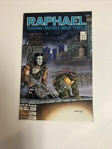 Teenage-Mutant-Ninja-Turtles-TMNT-Raphael-1987-1-VF-NM-1st-App-Casey