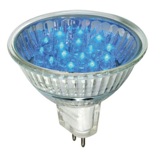 Paulmann 280.05 LED Reflektor 1W GU5,3 blau 45mm Höhe Leuchtmittel