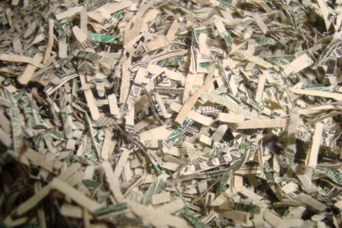 """Genuine Shredded USA Currency Cash encased in Plastic Case with 1/""""in Key Ring"""