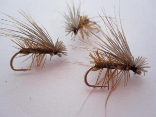 1 DZ D16-5 FOAM ELK HAIR CADDIS DRY FLIES COLOR /& SIZES AVAILABLE