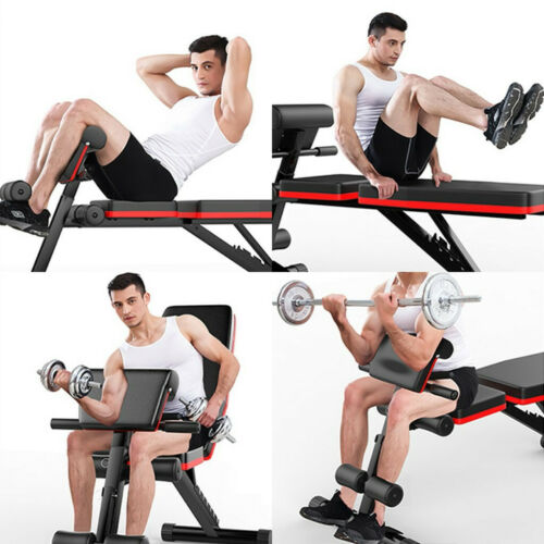 Details about  /Weight Bench Adjustable Home Gym Press Lifting Barbell Exercise Workout NEW