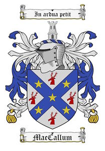 Surname-Coat-of-Arms-Family-Crest-PNG-Image-Sent-on-a-CD