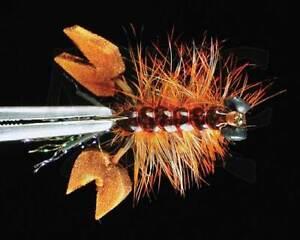 1-Size-4-Ritt-039-s-Fighting-Crawfish-Rust-Montana-Fly-Company
