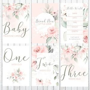 Baby-Milestone-Cards-4x6-Photo-Prop-42-Cards-Gentle-Rose