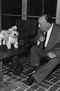 Alfred Hitchcock Posing avec Animal Chien 11x17 Mini Affiche ga8kiV8l-07210910-767944887