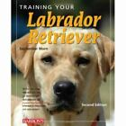 Training Your Dog: Training Your Labrador Retriever by September Morn (2009, Paperback, Revised)