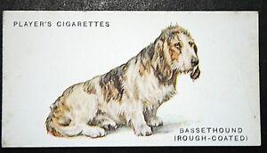 BASSET HOUND RoughCoated  Original Vintage Card  Wardle  VGC - Melbourne, Derbyshire, United Kingdom - BASSET HOUND RoughCoated  Original Vintage Card  Wardle  VGC - Melbourne, Derbyshire, United Kingdom