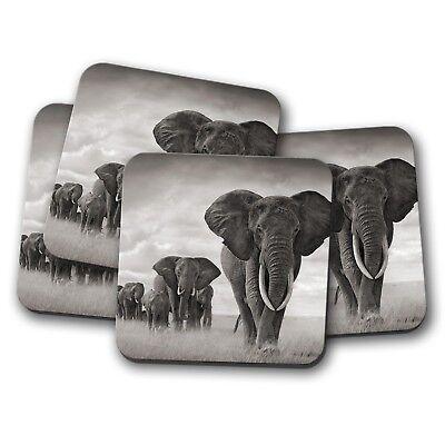 Stocking Stuffer Art Elephants Coaster set Giraffe African Animal Coaster Set. Cork Coaster Set Meerkat Coaster
