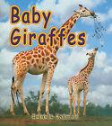 Baby Giraffes by Bobbie Kalman (Paperback / softback, 2010)