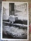 Photographie vintage Bébé dans son landau Snapshot vers 1935