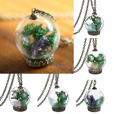 Amethyst Terrarium Raw Crystal Gemstone Real Flower Glass Wish Necklace Pendant