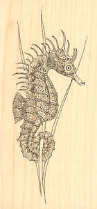 Ocean Seahorse, Wood Mounted Rubber Stamp IMPRESSION OBSESSION - NEW, D1325