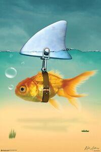 GOLD FISH SHARK - FUNNY POSTER 24x36 - 11560