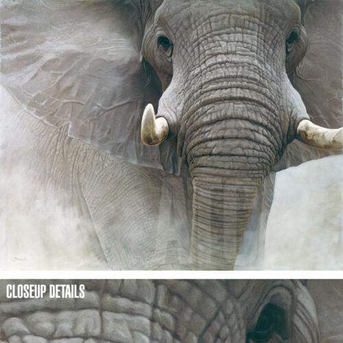 "45W/""x36H/"" POWER OF ONE by JOHN BANOVICH ELEPHANT TUSK MAMMAL DUMBO CANVAS"