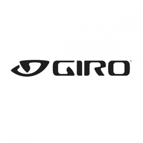 Giro Chronicle Helmet Visor