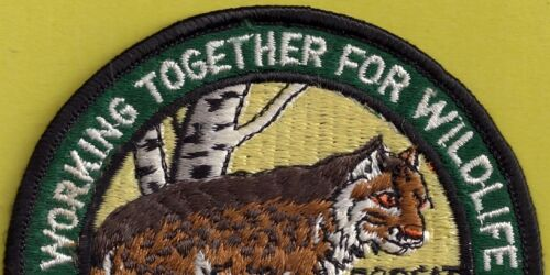 """Pa Pennsylvania Fish Game Commission  1985 NEW 4/"""" Eastern Bobcat Cat WTFW Patch"""