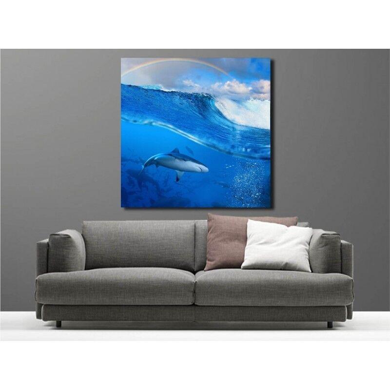 Cuadro Tela Decoración Tiburón Vista bajo Marino 70563883